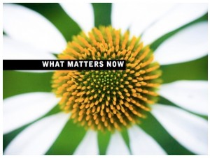 What Matters Now eBook